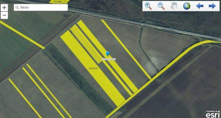 teren arabil extravilan pantelimon
